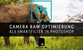 Bildoptimierungen mit Camera Raw als Smartfilter